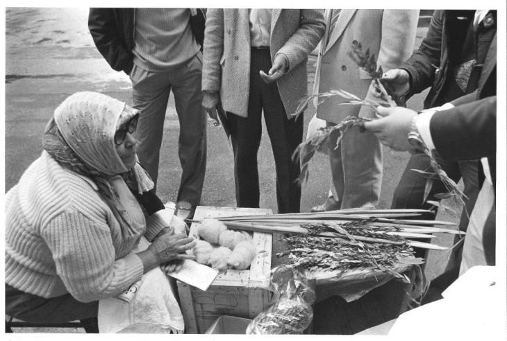 Rue des Rosiers, 1980